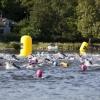Upplev Djurgården i öppet vatten under Stockholm Royal Park Aquathlon & Swim.
