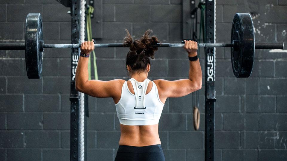 träningsprogram för hela kroppen