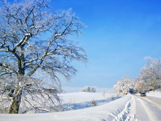 Mackarna som håller landsbygden levande i vinter