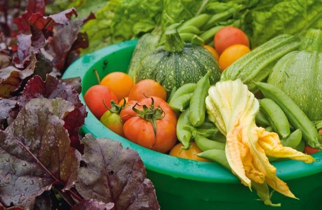 Undvik bekämpningsmedel i grönsaker
