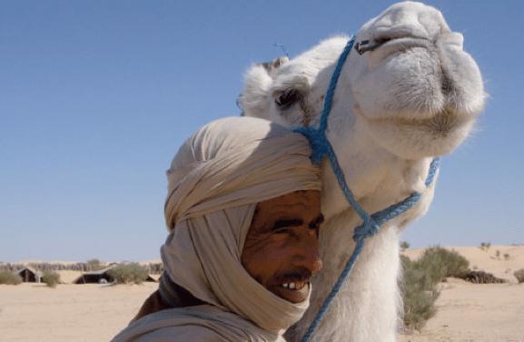 Helande lugn i Sahara