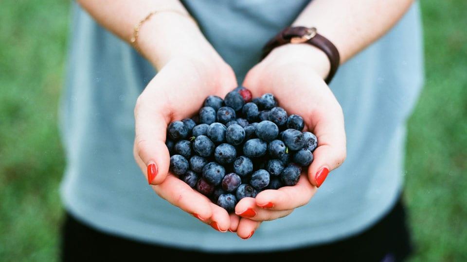 viktiga vitaminer och mineraler