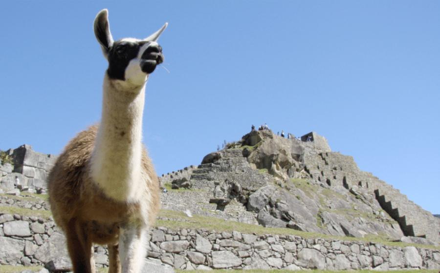 Upplev kultur och natur i Peru