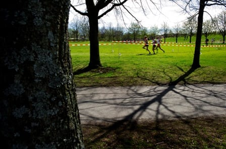 Grön träning får oss att må bättre