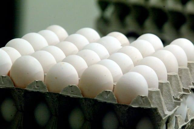 Ägg är bra att äta i samband med träning