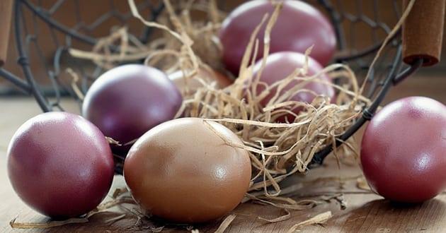 Därför är ägg nyttigt