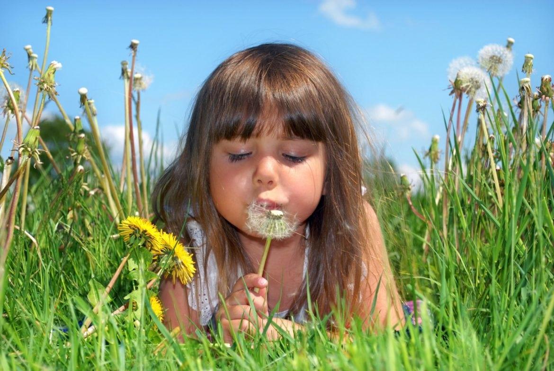 Nasaleze – effektiv hjälp vid gräspollenallergi