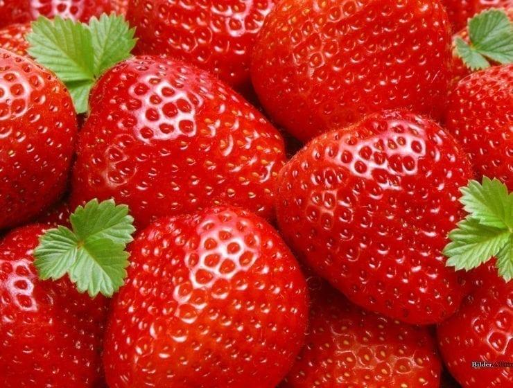 Äntligen är jordgubbarna är här