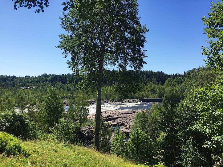 Baggböle Umeå