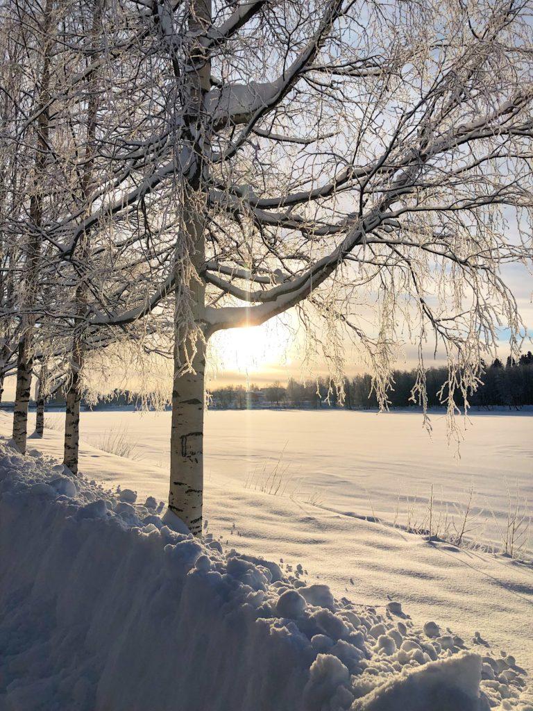 Vinter i Umeå