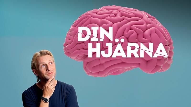 Din hjärna med Anders Hansen