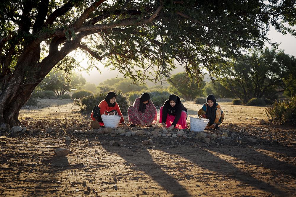 Argan olja - Marocko
