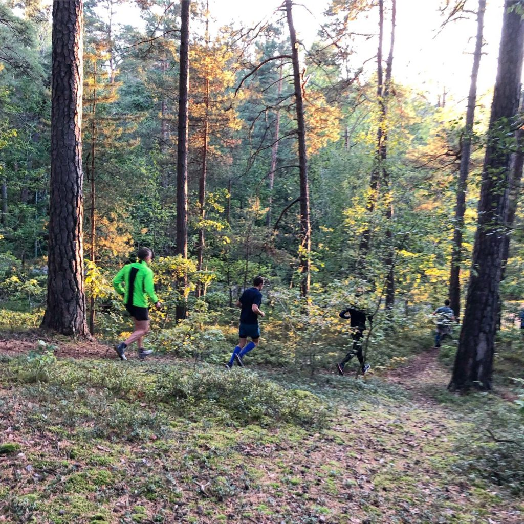 Veckans löppass: trailintervaller