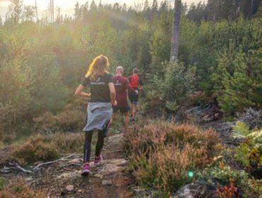 Löpning i kvällssol
