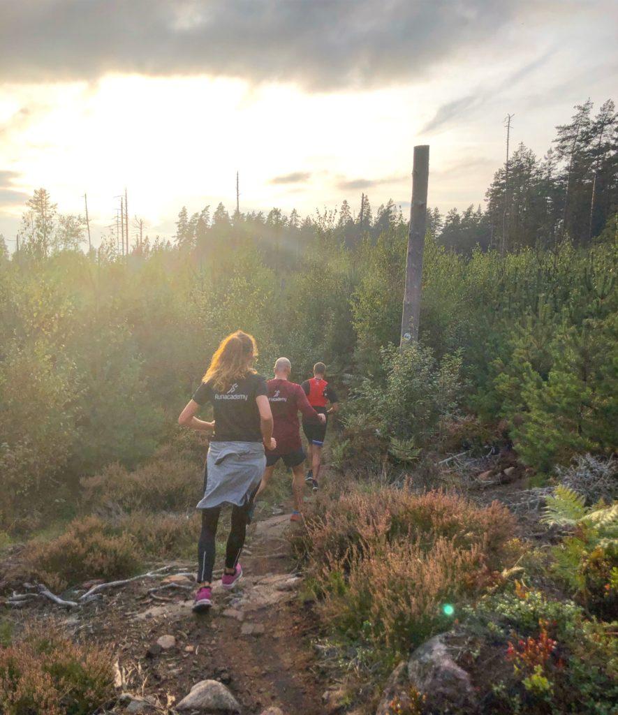 11 km trail