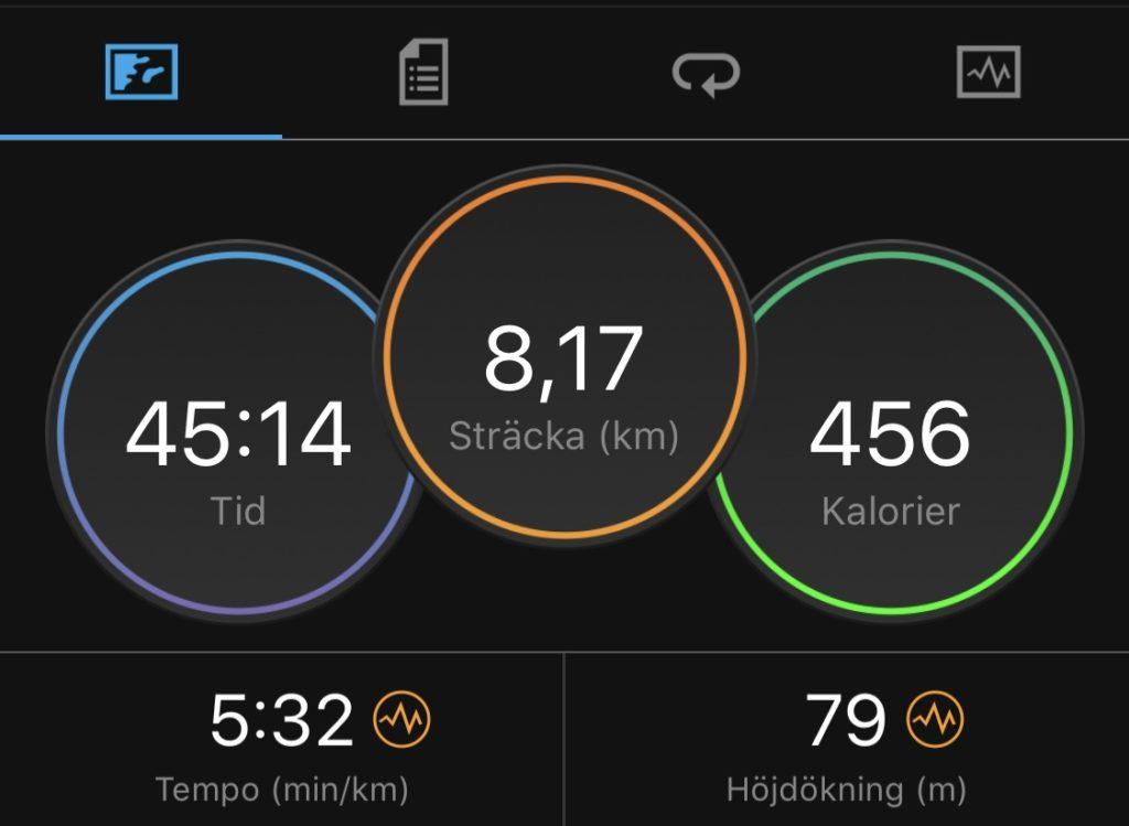 45 min löpning