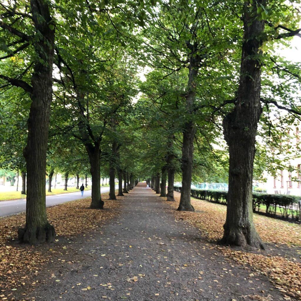 Södra promenaden