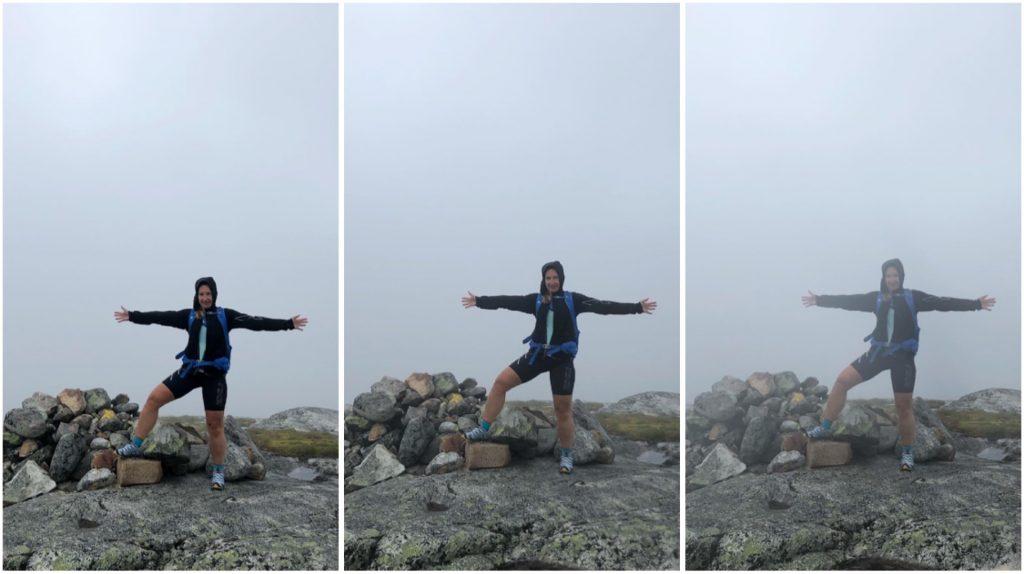 Toppen av Mullfjället