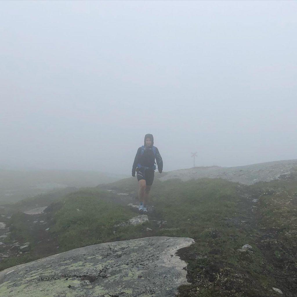 Vandring i dimma