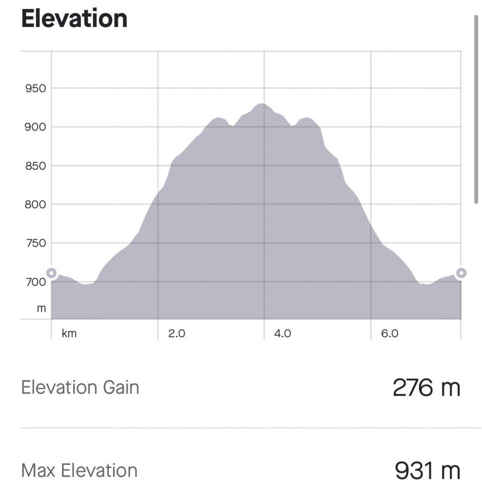 Skagsvola elevation