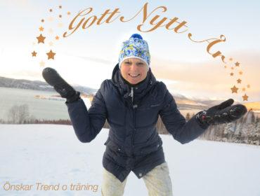 Gott nytt år /Anna Lissjanis