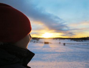 Vintermorgon på Gärdet /Anna Lissjanis