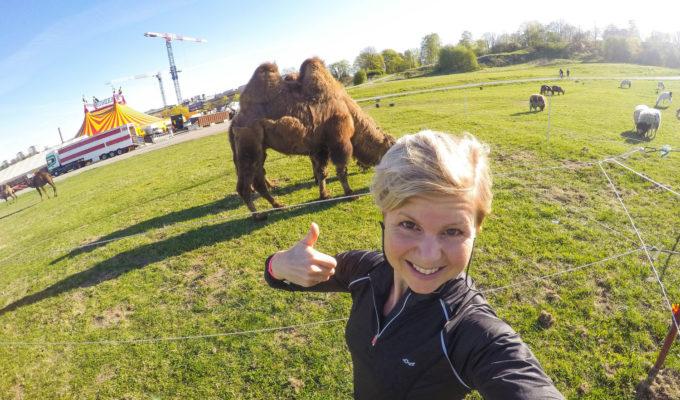 Anna Lissjanis och en kamel