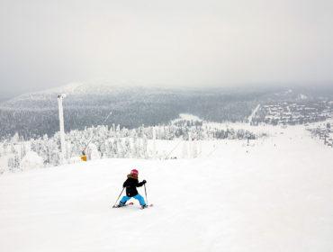 skidor i ruka