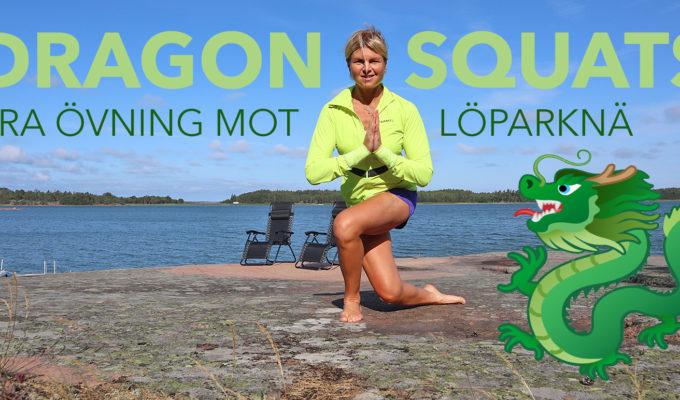 dragon squats