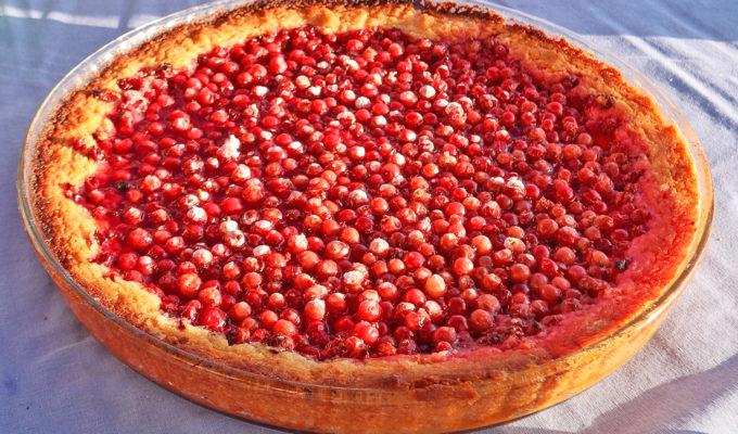 rödavinbärspaj