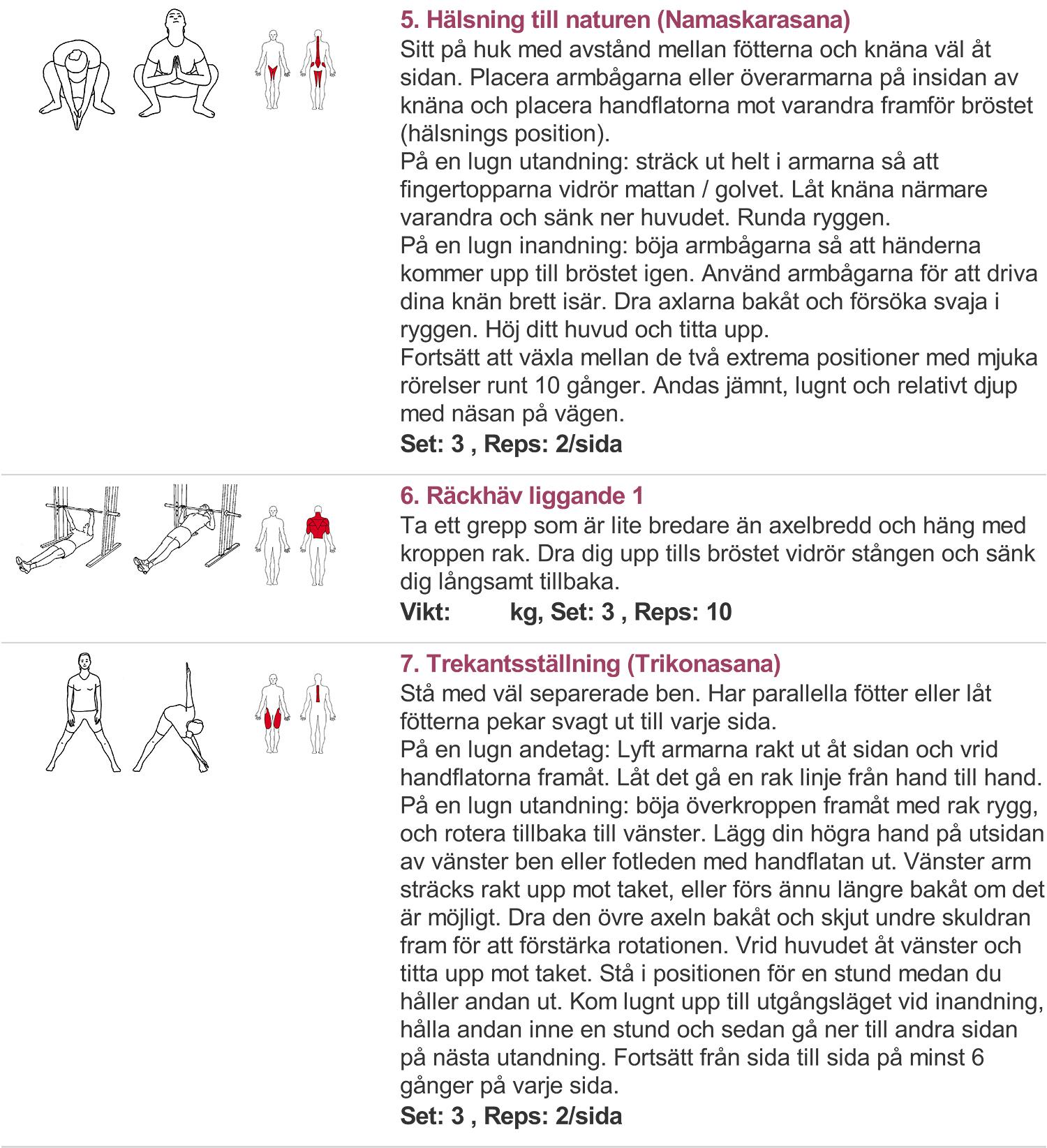 ryggträningsprogram