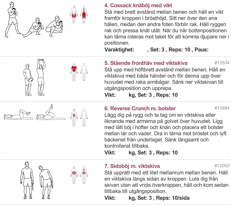 träningsprogram med viktplatta