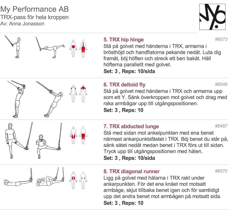 träningsprogram med TRX